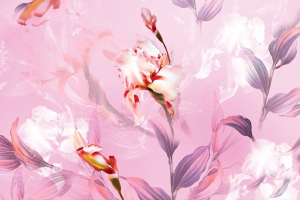 khăn lụa dài hoa lan