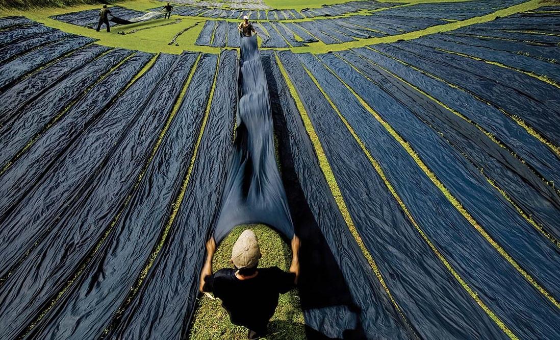 Làng nghề lụa Tân Châu.