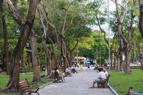 Chậm lại một chút để cảm nhận Sài Gòn bình dị, thân thương 23
